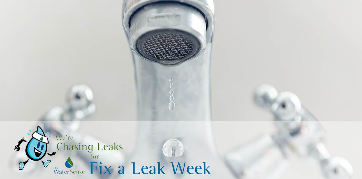 Chase Down Leaks During Fix a Leak Week