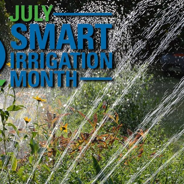 Increase Water-Use Efficiency During Smart Irrigation Month